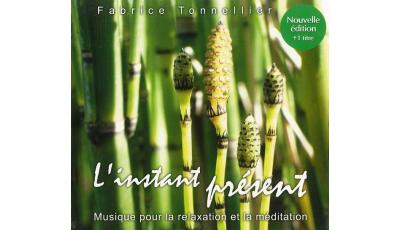 Instant présent (L') par Fabrice TONNELLIER