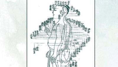Manuel complet de médecine chinoise et de shiatsu (seconde édition)