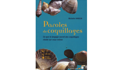 Paroles de coquillages par Michelle HANSON